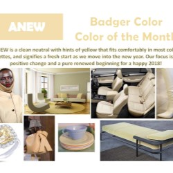 January - Color of the Month
